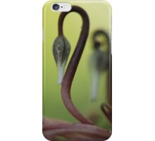 Cyclamen persicum (Persian Violet) bud iPhone Case/Skin
