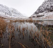 Winter Loch  by David Hannah