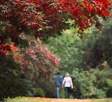Love for all seasons by Irina Chuckowree