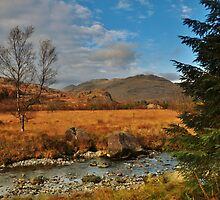 River Duddon. by John Pickles