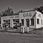 Frank&#x27;s Echo Service Station by thecameraman