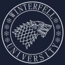 University of Winterfell (white) by karlangas