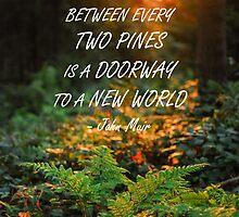 Between every two pines by artesonraju