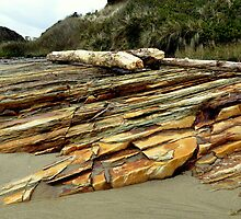 Petrified...Between Seal Beach and Waldport, Oregon by trueblvr