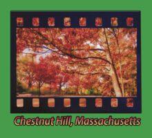 Fall Road,Chestnut Hill, Massachusetts One Piece - Short Sleeve