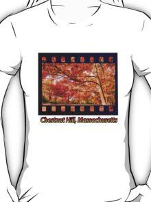 Fall Road,Chestnut Hill, Massachusetts T-Shirt