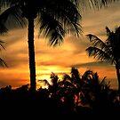 Kohala sunset by Linda Sparks