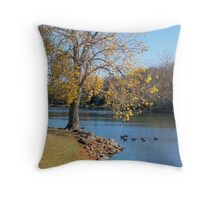 Tranquil Moment Throw Pillow