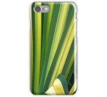 Spider Plant iPhone Case/Skin