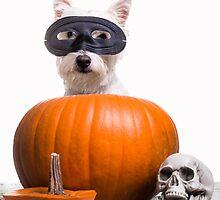 Happy Halloween by Edward Fielding