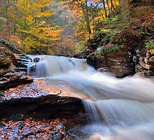 Autumn Splash by Gene Walls