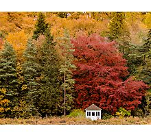 Autumn at the Summer House Photographic Print