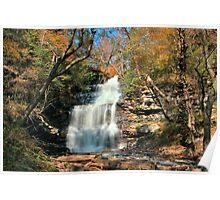 Ganoga Falls In the Bright Fall Sun Poster