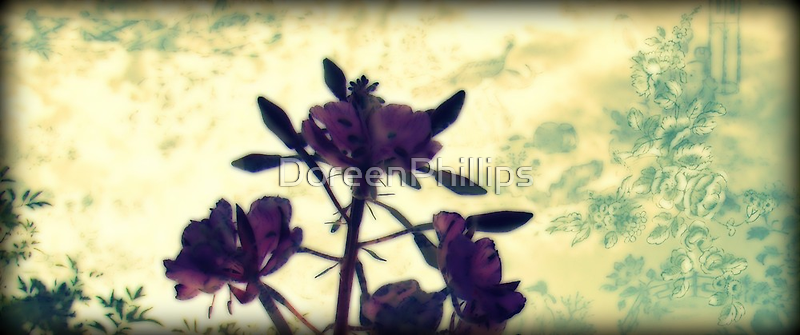 Floral by DoreenPhillips