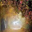Stroll In The Fog by Igor Zenin
