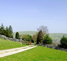 Approach to Air Cottage near Ilam  by Rod Johnson