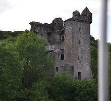 Scotland Castle Urquhart  by Donna/Lars Tovander