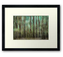 wood mystics Framed Print