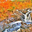 Rogie Falls  by Steve