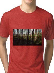 Ballymaloe's Grove Tri-blend T-Shirt