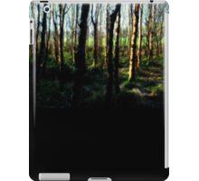 Ballymaloe's Grove iPad Case/Skin