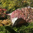 Central Park Bridge in Autumn, New York by lenspiro