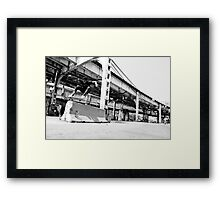 Timmy Johnson Framed Print