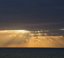 Morning Rays by dhmielowski