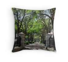 Historical Path Throw Pillow