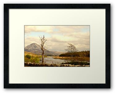 Mount Errigal From The Lodge by Fara
