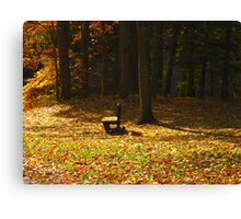 Gather your thoughts as leaves gather round Canvas Print