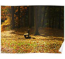Gather your thoughts as leaves gather round Poster