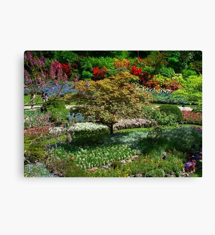 BUTCHART Gardens in Spring  Canvas Print