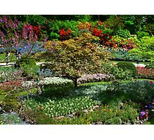 BUTCHART Gardens in Spring  Photographic Print