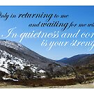 Quietness and Confidence by Catherine Davis