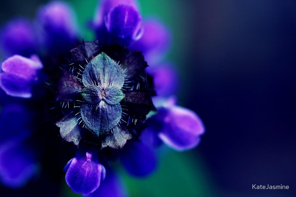 Wicked Lovely by KateJasmine