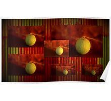 Rusty iron and Paddy Melons Poster