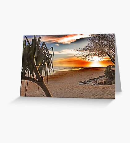 Kingscliff orange sunrise Greeting Card