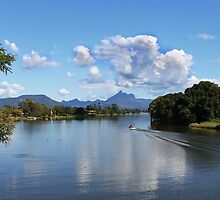 Mt Warning from the Tweed by Ron Finkel