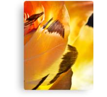 Wings of Aries Canvas Print