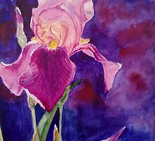 Iris flower by Victoria  _Ts