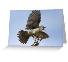 Big Scary Bird Greeting Card