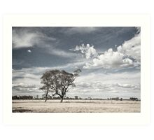 Two Trees - Tongala Art Print