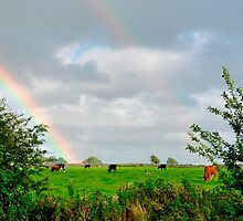 At the End of the Rainbow by Donna/Lars Tovander