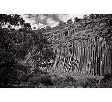 Organ Pipes - Victoria Photographic Print