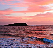 Cook Island Red sunrise by Ron Finkel