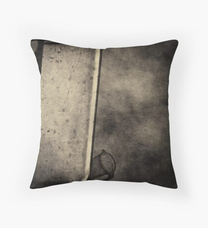 Beaker Throw Pillow