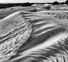 Dunes at Nambung National Park, W.A. by Sandra Chung