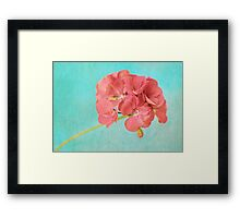 Sweet and Simple Framed Print