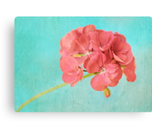 Sweet and Simple Canvas Print